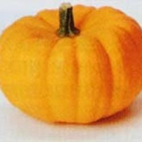 pumpkin_jack_be_little