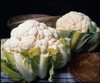 Cauliflower Autumn Giant