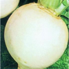 Turnip Snowball