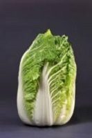 Chinese Cabbage Minuet F1