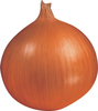 Onion Hi Keeper F1