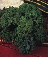 All about .. kale